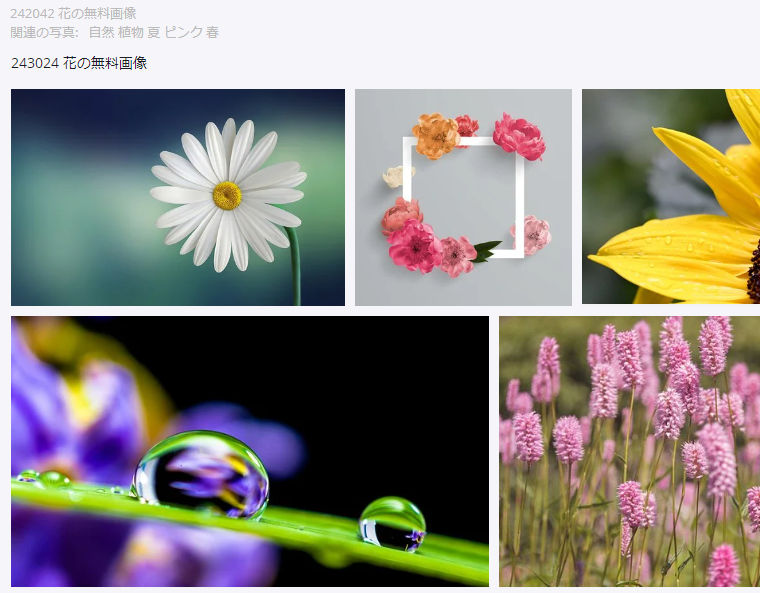 Pixabay:花