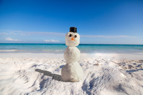 浜辺の雪だるま