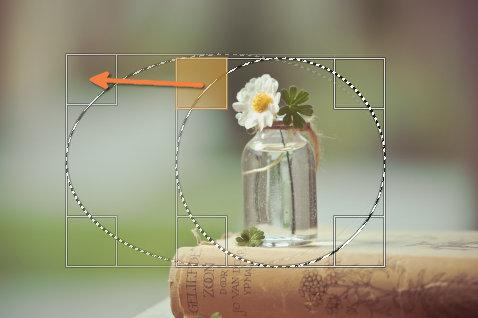 上下左右・4隅にある矩形をドラッグして移動させることで選択範囲を調整可能
