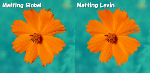 Matting GlobalとMatting Levinの比較