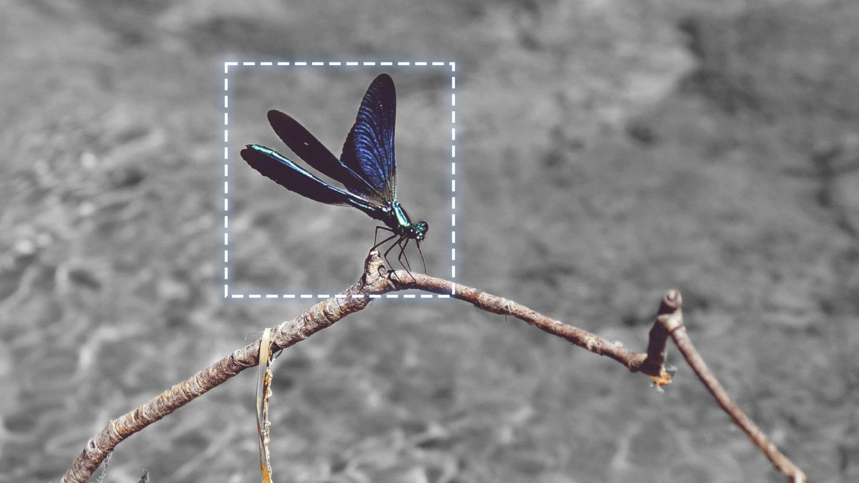 選択範囲の基本・長方形選択ツール Photoshop